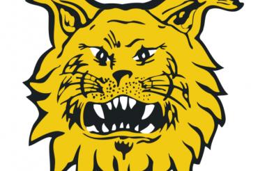 Koe aition tunnelma Ilveksen kotiotteluissa kaudella 2018-2019